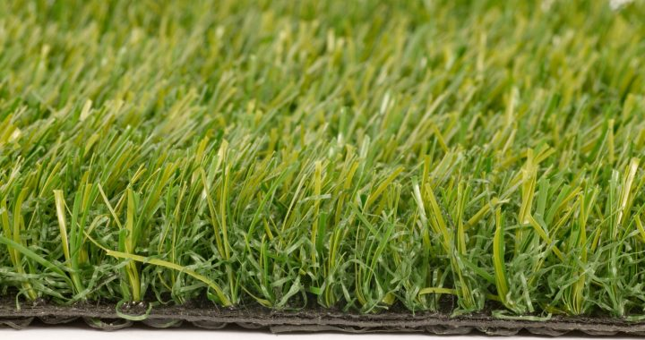 Pets and Artificial Grass